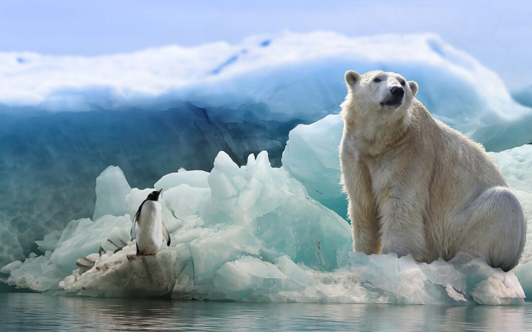 Konsekvenserne for klimaet, når isen smelter?